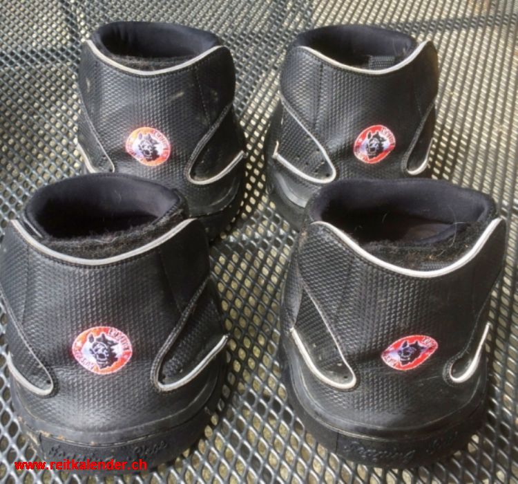 equine fusion boots